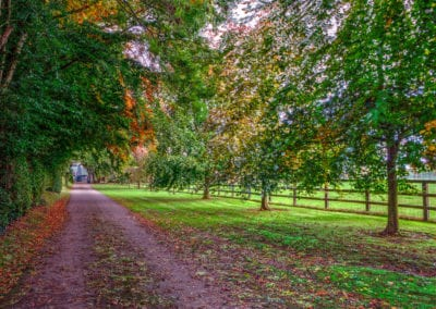 Forest Trail Walk Irish Holiday Homes Ireland Meath Dunshaughlin Self Catering things to do in meath