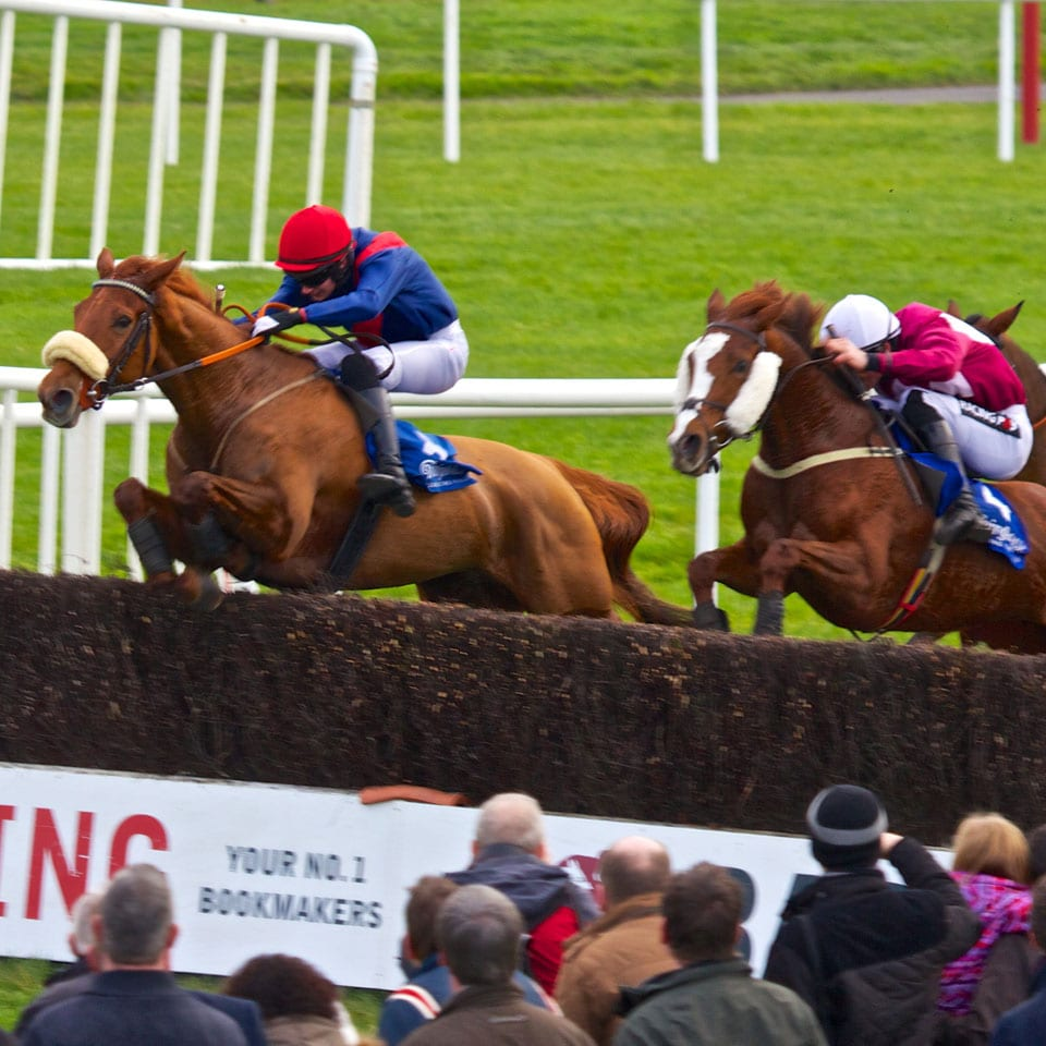 Horse-Racing-Fairyhouse-Meath-Dunshaughlin-Self-Catering-Cottages