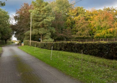 Irish Trees Road Forest Holiday Homes Ireland Meath Dunshaughlin Self Catering