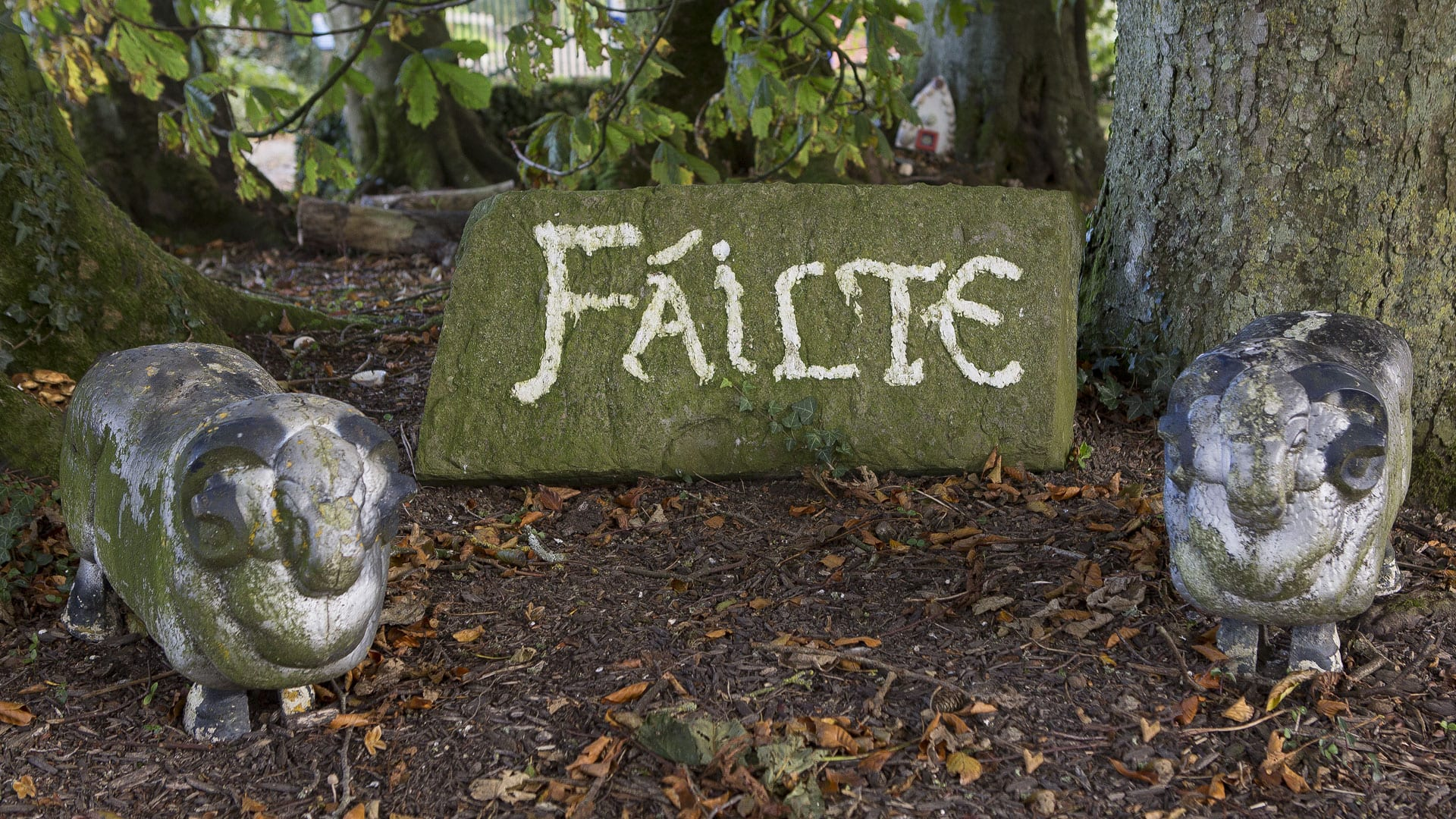 Statues-Failte-Welcome-Irish-Outdoors-Escape-Nature-Field-Trees-Farm-Holiday-Homes-Ireland-Meath-Dunshaughlin-Self-Catering
